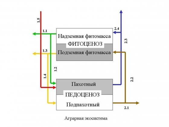 http://stimix.ru/uploads/posts/2017-05/1494840435_regnum_picture_1491377019642669_big.jpg